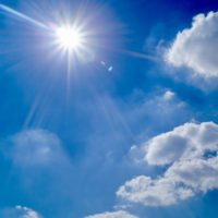 vitamin d and the immune system Cyrano
